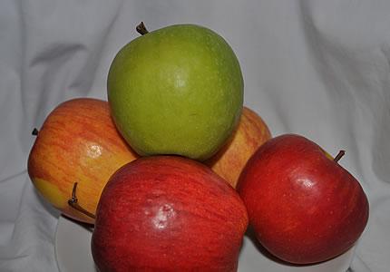 Die Apfelverkostung