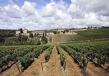 Chianti-Weinskandal: Die Tatsachen