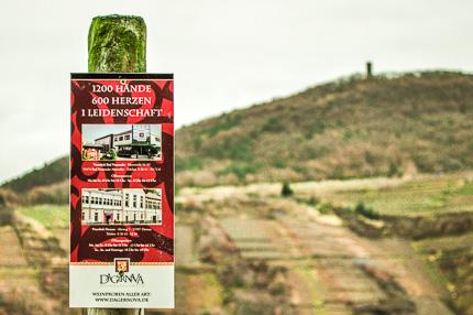 Weinrallye Rotwein im Sommer Weinmanufaktur Dagernova Frühburgunder trocken