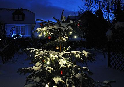Frohe Weihnachten und ein glückliches Jahr 2011