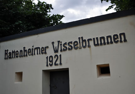 Riesling Erstes Gewächs 2011 aus dem Rheingau