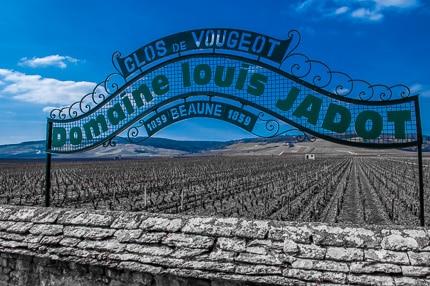 Louis Jadot Clos de Vougeot
