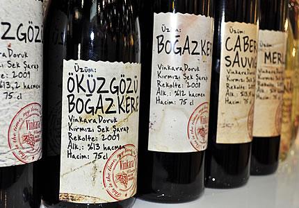Üzüm oder Wein aus Türkei: Mit Öküzgözü und Bogazkere per du