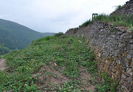 Rüdesheimer Berg Rottland