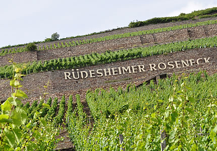 Rüdesheimer Berg Roseneck