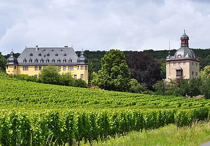 Zu Besuch auf Schloss Vollrads