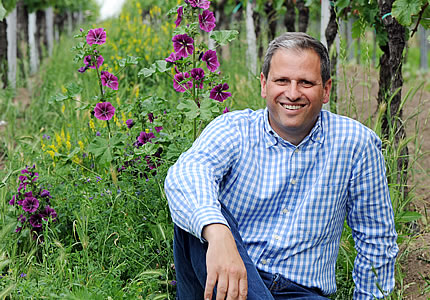 Steffen Christmann (VDP) im Interview