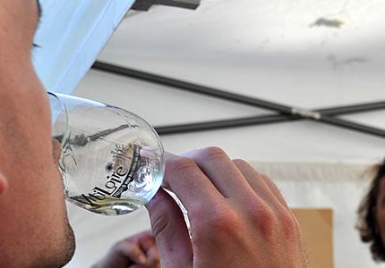 Weinblogger-Radtour Loire: Besuch von Weingütern und VitiLoire 2012
