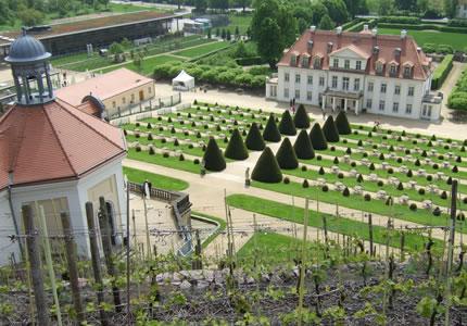 Schloss Wackerbarth Cuvee Sachsen Weiss